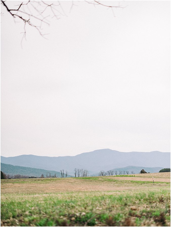 faithbrooke farm & vineyards wedding photographer luray virginia_0513