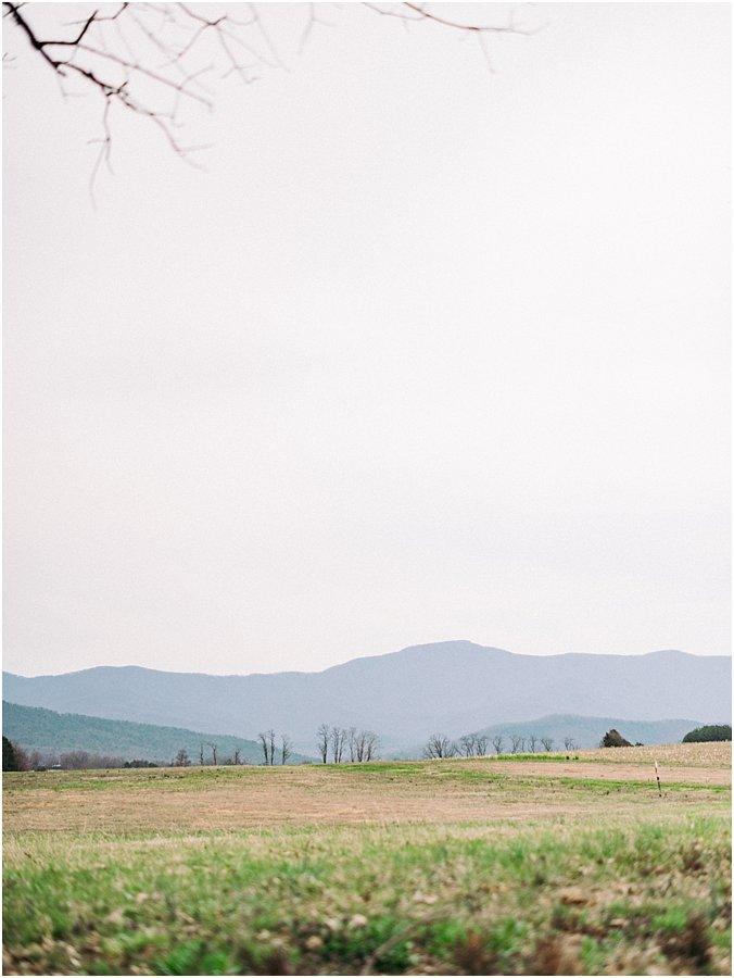 faithbrooke farm & vineyards wedding photographer luray virginia_0513