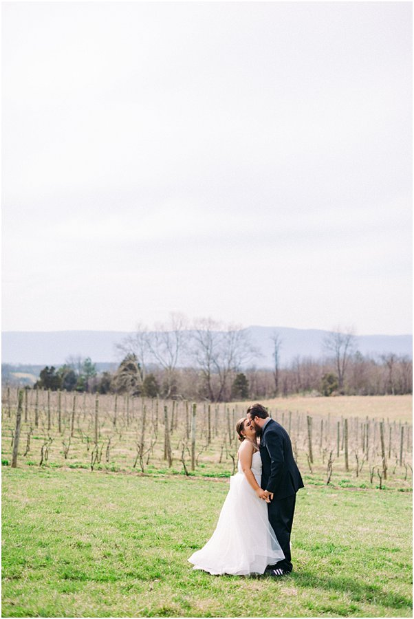 faithbrooke farm & vineyards wedding photographer luray virginia_0525